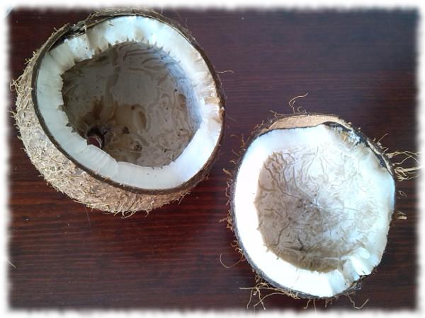 kokosnuss-geknackt