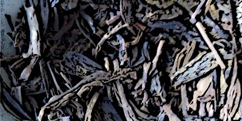Raus aus dem Brunnen, Drachenkönig – Tea Pavilion Lung Ching GrünerTee