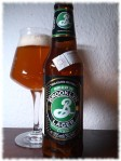Brooklyn Lager Flasche