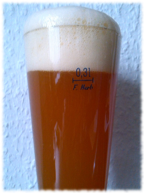 Indra Weizen India Pale Ale Glas