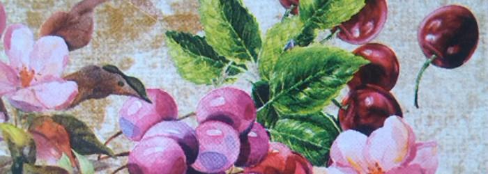 Die Sommerpause ist vorbei – Bonpland Bitters Stevnsbaer Cherry PinotNoir