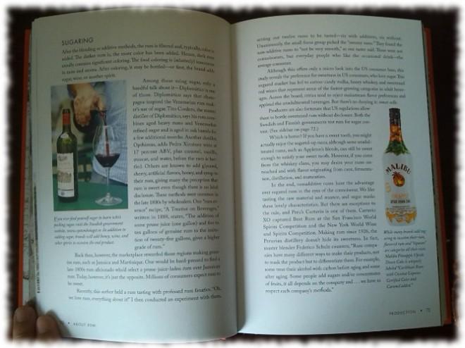 Rum Curious Innenseiten 1