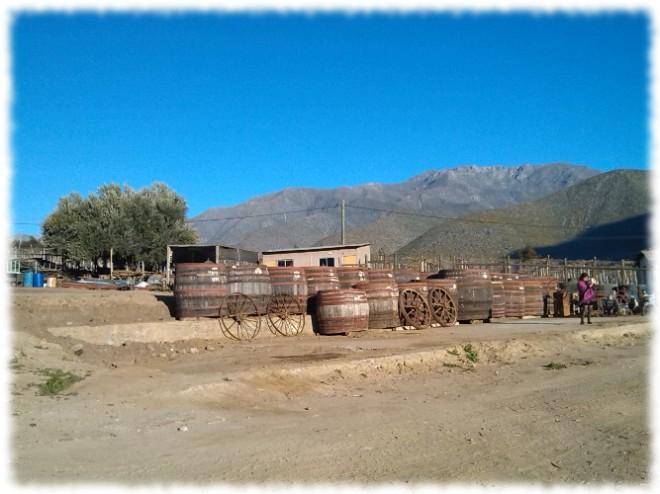 Pisco Bauzá Besuch der Destillerie 05