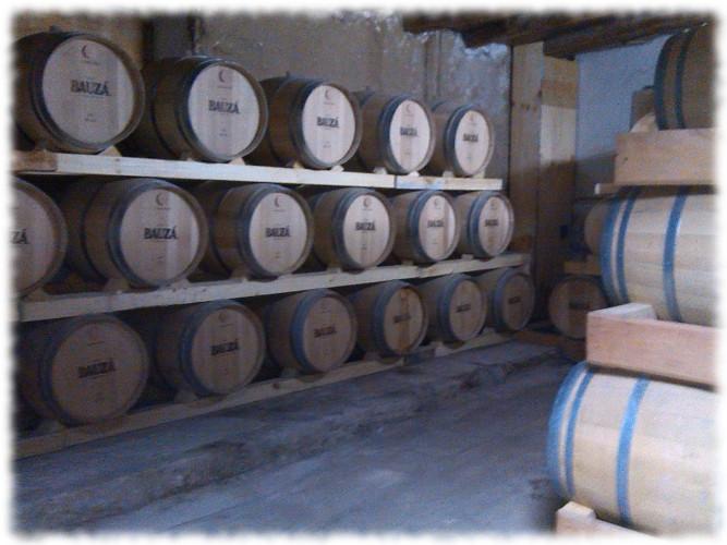 Pisco Bauzá Besuch der Destillerie 08