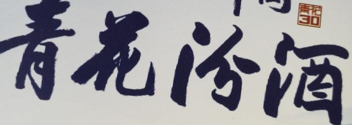 Blauweißes Diebesgut – 杏花村汾酒青花20 Xinghuacun Fenjiu Qinghua 20Baijiu