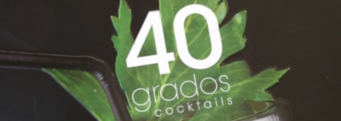 40 Grados Cocktails The Chilean Pisco Cocktail Book Titel