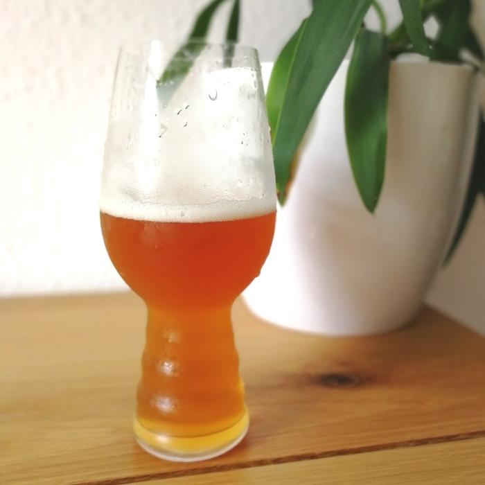 Rügener Insel-Brauerei German Coast Double IPA Glas
