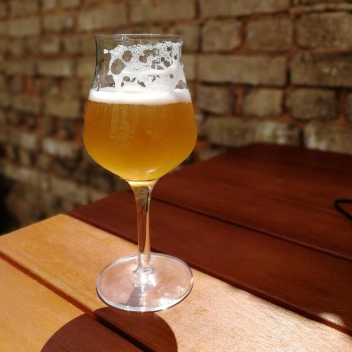 Rügener Insel-Brauerei German Pioneer Bière Brut Glas